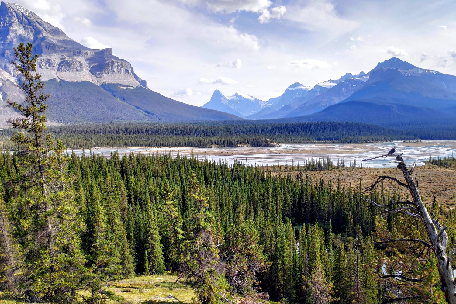 Panorama depuis l'Icefields Parkway