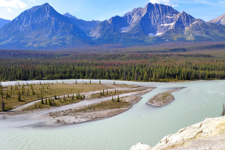 Rivière Athabasca dans le parc national de Jasper